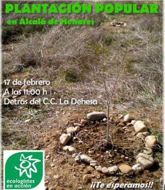 Plantación popular en Alcalá 17 febrero
